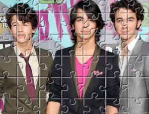 Brothers Jonas Ping Puzzle